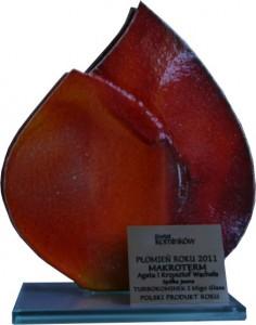 plomien_2011